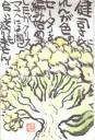 19961220.jpg